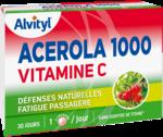 Govital Acerola 1000 à CANEJAN