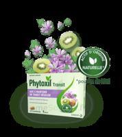 PHYTOXIL TRANSIT Comprimés B/20 à CANEJAN