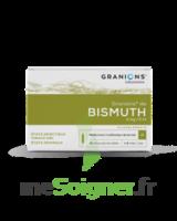 Granions De Bismuth 2 Mg/2 Ml S Buv 10amp/2ml à CANEJAN