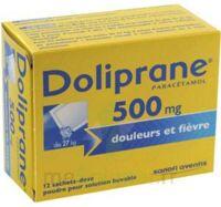 DOLIPRANE 500 mg Poudre pour solution buvable en sachet-dose B/12 à CANEJAN
