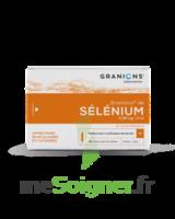 Granions De Selenium 0,96 Mg/2 Ml S Buv 30amp/2ml à CANEJAN