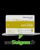 Granions De Soufre 19,5 Mg/2 Ml S Buv 30amp/2ml à CANEJAN