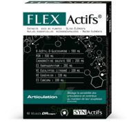Synactifs Flexactifs Gélules B/60 à CANEJAN