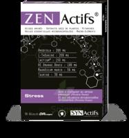 Synactifs Zenactifs Gélules B/30 à CANEJAN