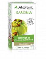 Arkogélules Garcinia Gélules Fl/45 à CANEJAN