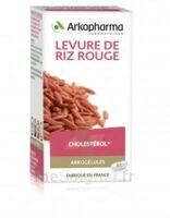 Arkogélules Levure de riz rouge Gélules Fl/45 à CANEJAN