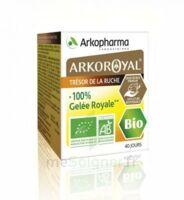Arkoroyal 100% Gelée royale bio Gelée Pot/40g à CANEJAN
