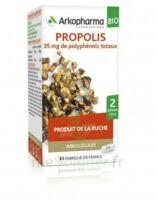 Arkogélules Propolis Bio Gélules Fl/45 à CANEJAN