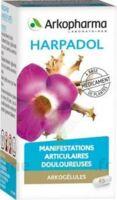 ARKOGELULES HARPAGOPHYTON, 150 gélules à CANEJAN