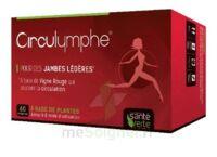 Santé Verte Circulymphe Triple Actions B/30 à CANEJAN