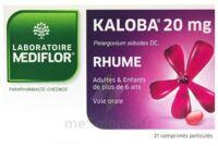 KALOBA 20 mg Cpr pell Plq/21 à CANEJAN