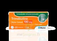 TRIMEBUTINE MYLAN CONSEIL 100 mg, comprimé à CANEJAN