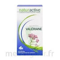 ELUSANES VALERIANE 200 mg, gélule Pilul/30 à CANEJAN
