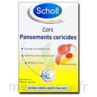 Scholl Pansements coricides cors à CANEJAN