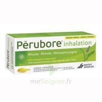 PERUBORE Caps inhalation par vapeur inhalation Plq/15 à CANEJAN