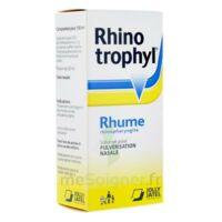 RHINOTROPHYL Solution pour pulvérisation nasale 1Fl/12ml à CANEJAN