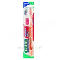 GUM TECHNIQUE PRO Brosse dents médium B/1 à CANEJAN