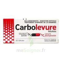 CARBOLEVURE Gélules adulte Plq/30 à CANEJAN
