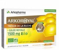 Arkoroyal Gelée royale bio 1500 mg Solution buvable 20 Ampoules/10ml à CANEJAN