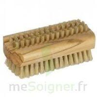 Cartel Brosse ongles soie naturelle à CANEJAN