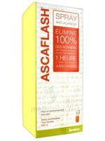 Ascaflash Spray anti-acariens 500ml à CANEJAN
