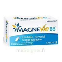 Magnevie B6 100 mg/10 mg Comprimés pelliculés Plaq/60 à CANEJAN