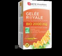 Forte Pharma Gelée royale bio 2000 mg Solution buvable 20 Ampoules/15ml à CANEJAN