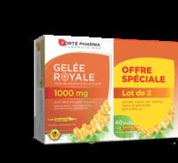 Forte Pharma Gelée royale 1000 mg Solution buvable 2*B/20 Ampoules/10ml à CANEJAN