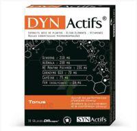 Synactifs Dynactifs Gélules B/30 à CANEJAN