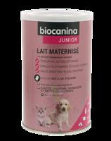 Biocanina Lait poudre maternisé B/400g à CANEJAN