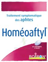 Boiron Homéoaftyl Comprimés à CANEJAN