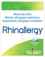 Boiron Rhinallergy Comprimés B/40 à CANEJAN
